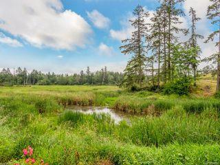 Photo 31: 1338 Blue Heron Cres in NANAIMO: Na Cedar House for sale (Nanaimo)  : MLS®# 844056