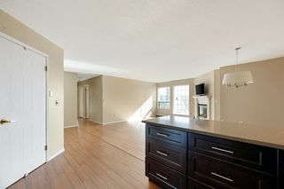 Photo 9: 713 3 PERRON Street: St. Albert Condo for sale : MLS®# E4209518
