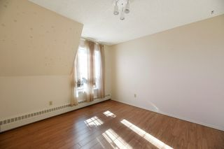 Photo 15: 713 3 PERRON Street: St. Albert Condo for sale : MLS®# E4209518