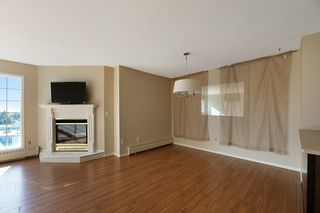 Photo 11: 713 3 PERRON Street: St. Albert Condo for sale : MLS®# E4209518