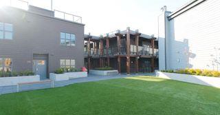 Photo 32: 206 12088 3RD AVENUE in Richmond: Steveston Village Condo for sale : MLS®# R2469031
