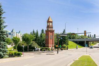 Photo 18: 203 37 SIR WINSTON CHURCHILL Avenue: St. Albert Condo for sale : MLS®# E4218697