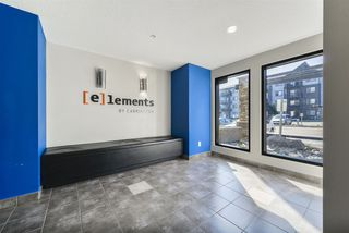 Photo 4: 118 3357 16A Avenue in Edmonton: Zone 30 Condo for sale : MLS®# E4171016