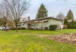 Photo 3: 11712 STEEVES Street in Maple Ridge: Southwest Maple Ridge House for sale : MLS®# R2404820