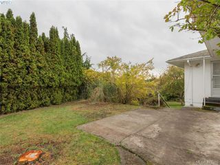 Photo 15: 3985 Hollydene Pl in VICTORIA: SE Arbutus Single Family Detached for sale (Saanich East)  : MLS®# 827429