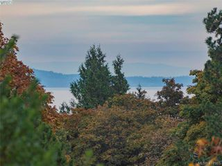 Photo 24: 3985 Hollydene Pl in VICTORIA: SE Arbutus House for sale (Saanich East)  : MLS®# 827429