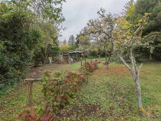 Photo 7: 3985 Hollydene Pl in VICTORIA: SE Arbutus Single Family Detached for sale (Saanich East)  : MLS®# 827429