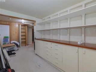 Photo 30: 3985 Hollydene Pl in VICTORIA: SE Arbutus Single Family Detached for sale (Saanich East)  : MLS®# 827429