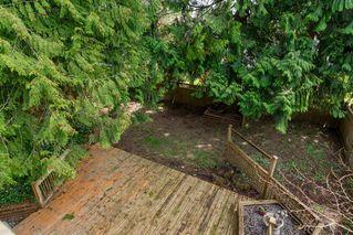 Photo 26: 20838 117th Avenue in MAPLE RIDGE: Home for sale