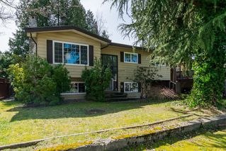 Photo 4: 20838 117th Avenue in MAPLE RIDGE: Home for sale