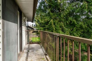 Photo 24: 20838 117th Avenue in MAPLE RIDGE: Home for sale
