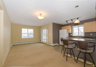 Main Photo: 117 616 MCALLISTER Loop in Edmonton: Zone 55 Condo for sale : MLS®# E4187385