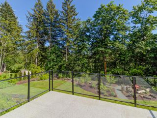 Photo 39: 4887 Greaves Cres in COURTENAY: CV Courtenay West Single Family Detached for sale (Comox Valley)  : MLS®# 840438