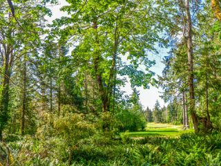 Main Photo: SL 9 950 Heriot Bay Rd in QUADRA ISLAND: Isl Quadra Island Land for sale (Islands)  : MLS®# 841820