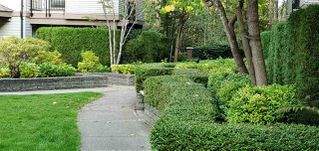 Photo 10: 213 10088 148 Street in Surrey: Guildford Condo for sale (North Surrey)  : MLS®# R2507175