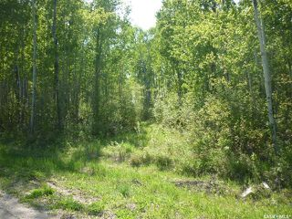 Photo 1: 4 Smits Avenue in Codette: Lot/Land for sale : MLS®# SK834454