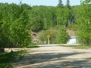 Photo 3: 4 Smits Avenue in Codette: Lot/Land for sale : MLS®# SK834454