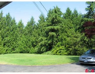 Photo 5: 24260 46A Avenue in Langley: Langley City House for sale : MLS®# F2912273