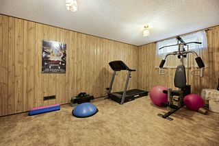 Photo 24: 5208 124A Avenue in Edmonton: Zone 06 House for sale : MLS®# E4173682