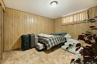 Photo 23: 5208 124A Avenue in Edmonton: Zone 06 House for sale : MLS®# E4173682