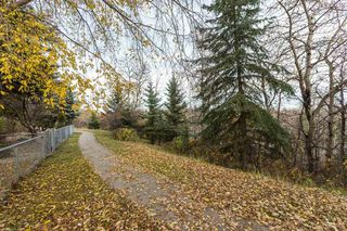 Photo 3: 11 Running Creek Point in Edmonton: Zone 16 House for sale : MLS®# E4178222