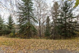Photo 23: 11 Running Creek Point in Edmonton: Zone 16 House for sale : MLS®# E4178222