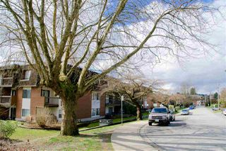 Photo 1: 312 33850 FERN Street in Abbotsford: Central Abbotsford Condo for sale : MLS®# R2494016
