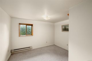 Photo 22: 1111 Leonard St in : Vi Fairfield West House for sale (Victoria)  : MLS®# 859498