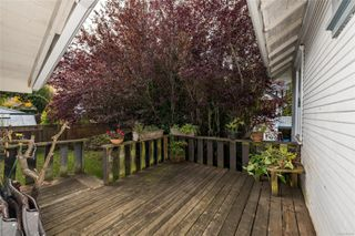 Photo 24: 1111 Leonard St in : Vi Fairfield West House for sale (Victoria)  : MLS®# 859498
