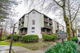 """Photo 25: 403 385 GINGER Drive in New Westminster: Fraserview NW Condo for sale in """"Fraser Mews"""" : MLS®# R2525909"""