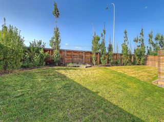 Photo 28: 109 WALDEN Square SE in Calgary: Walden Detached for sale : MLS®# C4261560