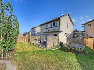 Photo 29: 109 WALDEN Square SE in Calgary: Walden Detached for sale : MLS®# C4261560