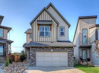 Photo 32: 109 WALDEN Square SE in Calgary: Walden Detached for sale : MLS®# C4261560