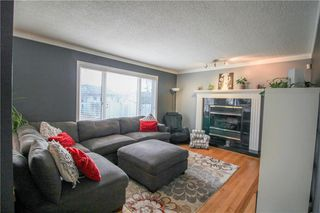 Photo 11: 135 Williamson Crescent in Winnipeg: Harbour View South Residential for sale (3J)  : MLS®# 202007780