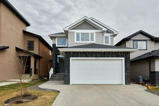 Photo 25: 6010 167C Avenue in Edmonton: Zone 03 House for sale : MLS®# E4195722