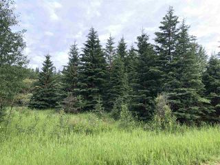 Photo 8: 624 Rge Rd 251: Rural Athabasca County Rural Land/Vacant Lot for sale : MLS®# E4202177