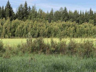 Photo 31: 624 Rge Rd 251: Rural Athabasca County Rural Land/Vacant Lot for sale : MLS®# E4202177