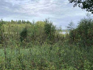 Photo 32: 624 Rge Rd 251: Rural Athabasca County Rural Land/Vacant Lot for sale : MLS®# E4202177