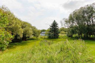 Photo 34: 97 Hillsdale: Rural Strathcona County House for sale : MLS®# E4207254