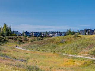 Photo 40: 66 KINCORA Heights NW in Calgary: Kincora Detached for sale : MLS®# A1032026