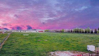 Photo 4: (Near 223015) Range Road 255: Rural Wheatland County Land for sale : MLS®# A1055736