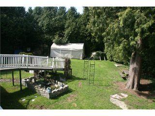 Photo 10: 20837 STONEY Avenue in Maple Ridge: Southwest Maple Ridge House for sale : MLS®# V820859