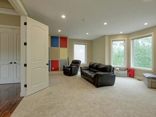 Photo 19: 51222 RGE RD 260: Rural Parkland County House for sale : MLS®# E4169597