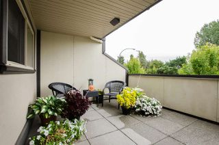 "Photo 6: A210 4811 53 Street in Delta: Hawthorne Condo for sale in ""LADNER POINTE"" (Ladner)  : MLS®# R2431397"