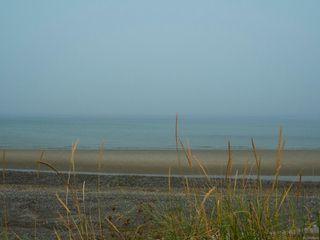Photo 42: 102 3156 W Island Hwy in : PQ Qualicum Beach Condo for sale (Parksville/Qualicum)  : MLS®# 856318