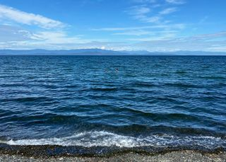 Photo 39: 102 3156 W Island Hwy in : PQ Qualicum Beach Condo for sale (Parksville/Qualicum)  : MLS®# 856318