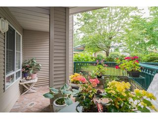 """Photo 16: 137 19528 FRASER Highway in Surrey: Cloverdale BC Condo for sale in """"Fairmont on the Blvd"""" (Cloverdale)  : MLS®# R2509162"""