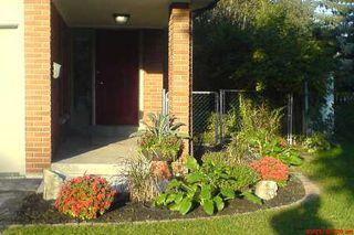 Photo 9: 92 Angus Drive in Toronto: House (2-Storey) for sale (C15: TORONTO)  : MLS®# C1965591
