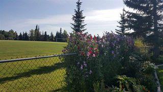 Photo 22: 10553 16 Avenue NW in Edmonton: Zone 16 House for sale : MLS®# E4173425