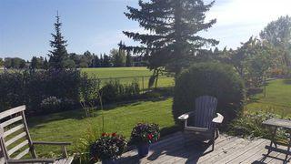 Photo 21: 10553 16 Avenue NW in Edmonton: Zone 16 House for sale : MLS®# E4173425